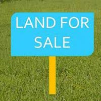 Investment in residential plots in Noida