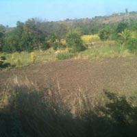 Buy residential plots in sector 70 Noida