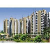 Buy flat in Prateek Wisteria Noida