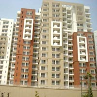 Buy Flats in 3 cs