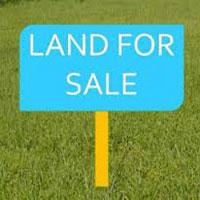 Best Price Residential Plots in Noida
