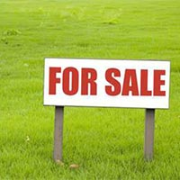 Buy Plot in Noida