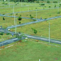 Residential Plot For Sale In Noida