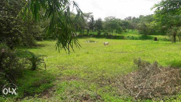 Commercial Lands /Inst. Land for Sale in Silvassa Bhilad Road, Silvassa