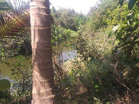 5 Acre Agricultural Land with Farm House River Touch