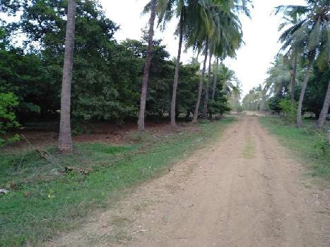 Industrial Land & Agricultural land Available At Umbergoan