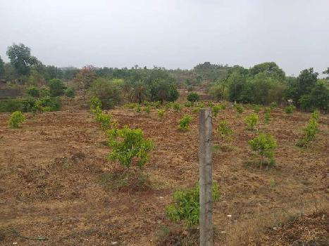 4 Acre title Clear Agricultural Land for Sell Near Silvassa