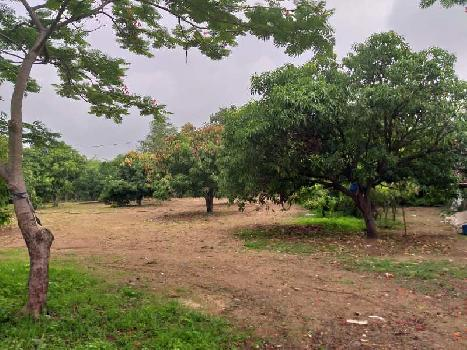 3 Acre Hotel N.A land at Dudhani for Resort