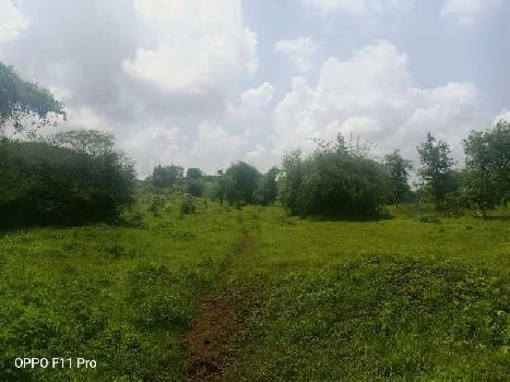 99 Acre Land Parcel Available at Silvassa Title Clear