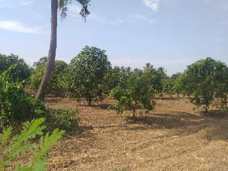 16 Acre  Agricultural Land for Sell Near vapi
