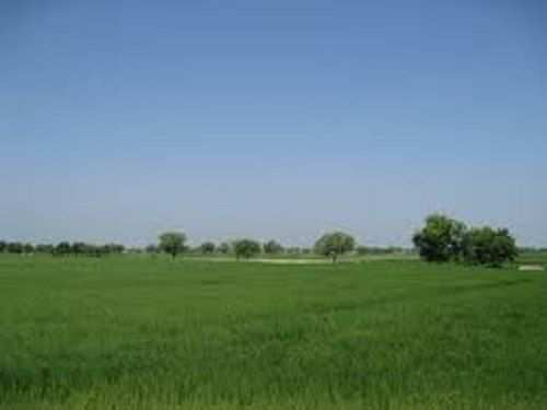 Jaipur property