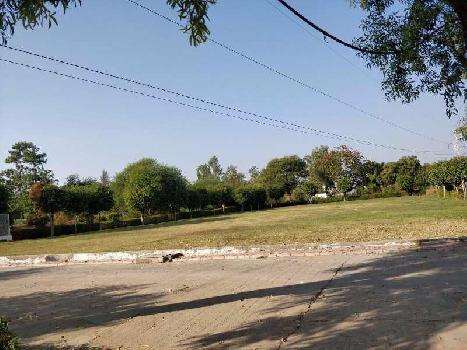 Residential Plot For Sale In Talawali Chanda, Indore