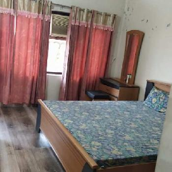 One room kitchen bathroom first floor available in model town Ludhiana