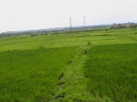 Industrial Land / Plot for Sale in Chakan, Pune