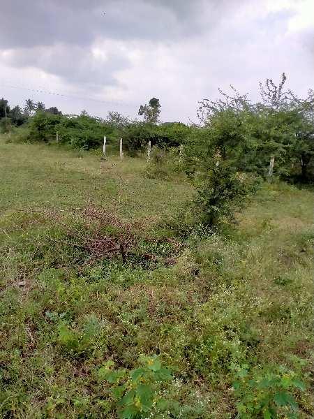 NA clear property