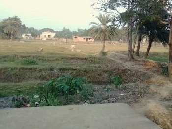 1440 Sq.ft. Commercial Lands /Inst. Land for Sale in Sonarpur, Kolkata