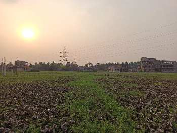 Lilua,chakpara, howrah, 4 side open land