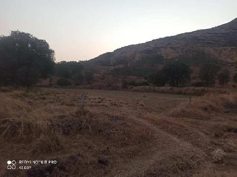 45 Guntha Agricultural/Farm Land for Sale in Igatpuri, Nashik