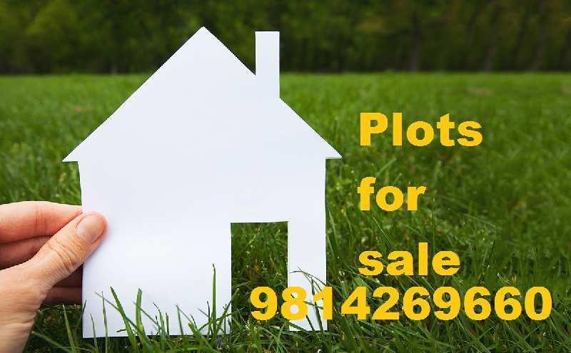 plot for sale global city sec 124