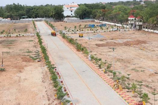 Kandakatla valley 2