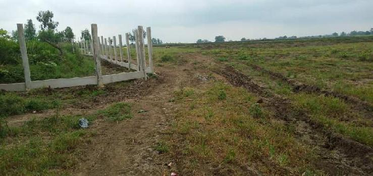13 Ares Residential Plot for Sale in Amarpatan, Satna