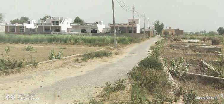 Residential Plot for Sale in Jasana Village, Faridabad