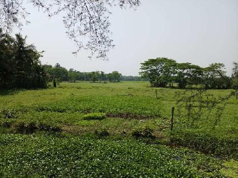 Industrial Land / Plot for Sale in Thakurpukur, Kolkata