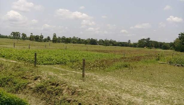 residential land available at amtala