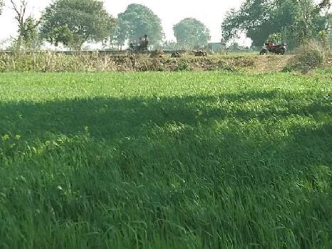 Agriculture Land For Sale In Near Jewar Airport