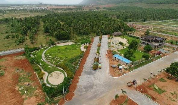 167 Sq. Yards Residential Plot for Sale in Achutapuram, Visakhapatnam