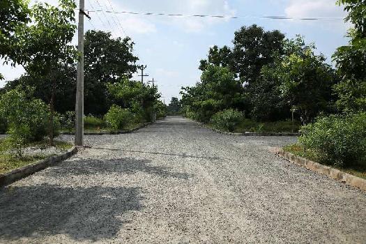 Residential Plot for Sale in Tagarapuvalasa, Visakhapatnam