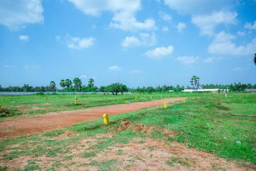 Residential Plot for Sale in Tagarapuvalasa, Visakhapatnam