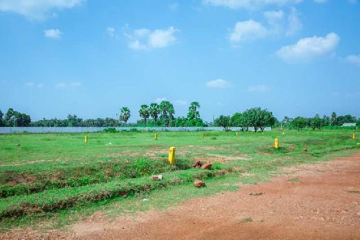 nandanavanam visista residential VUDA Approved plot for sale at majjipeta village