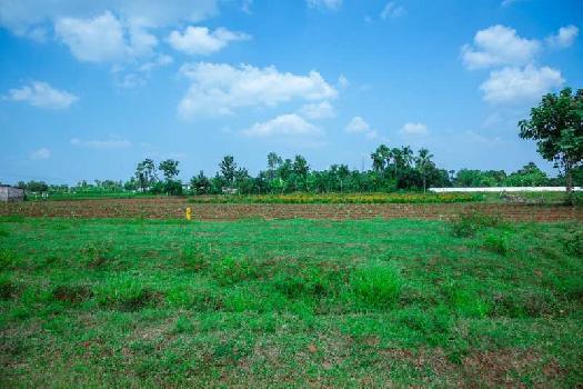 nandanavanam visista residential VUDA Approved plot for sale at dakamarri majjipeta village with  LP NUMBER