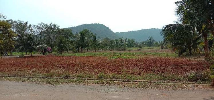 RESIDENTIAL OPEN VUDA APPROVED PLOTS FOR SALE AT PARAVADA WITH LP NUMBER  WITH LOW BUDGET