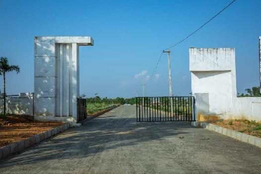 OPEN PLOTS FOR SALE AT TAGARAPUVALASA HIGHWAY