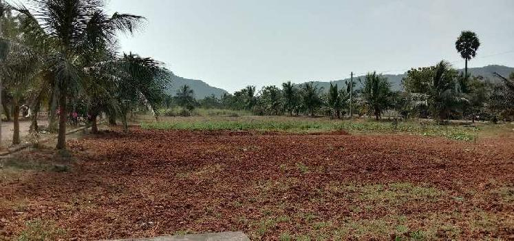 BALAJI HILL VIEW COUNTY PROJECT FOR RESIDENTIAL VUDA APPROVED PLOTS FOR SALE AT PARAVADA
