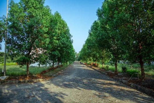 EXCELLENT  NANDANAVANAM RESIDENTIAL VUDA APPROVED OPEN PLOTS FOR SALE AT TAGARAPUVALASA  WITH LP NUMBER