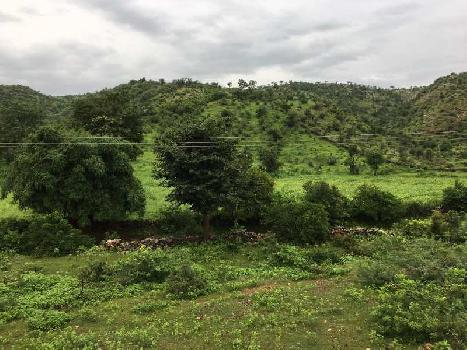 10+ BHK Farm House for Sale in Eklingji, Udaipur