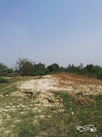6 Bigha Agricultural/Farm Land For Sale In Mohanlalganj, Lucknow