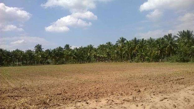 Residential Plot for Sale in Jhusi, Allahabad