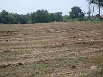 Residential Plot for Sale in Mundera, Allahabad