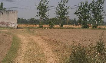 Residential Plot for Sale in Allahabad Road