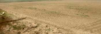 1 acre 6 kanal ( 8470 yard  )agriculture land for sale bhelpa green valley scheme
