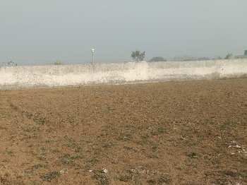 Agricultural/Farm Land for Sale in Sohna Road, Gurgaon