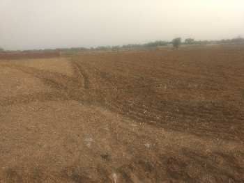 Warehouse land for sale Bilaspur tauru main road