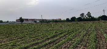 Farm land for sale in farm house scheme sohna ballabgarh road