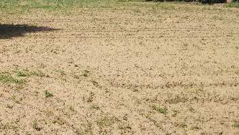 4 acre land for sale near  Peppery LID Warehouse sohna road gurgaon
