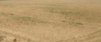 45 acre ware house land for sale pataudi to luhari road near indospace warehouse