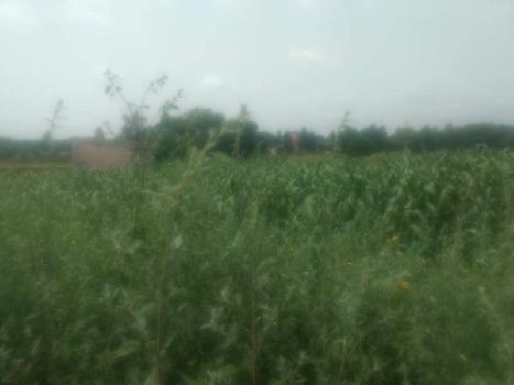 2 acre land for rent sohna road gurgaon near bhelpa green valleyu scheme